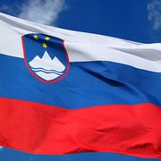 Stran v slovenščini